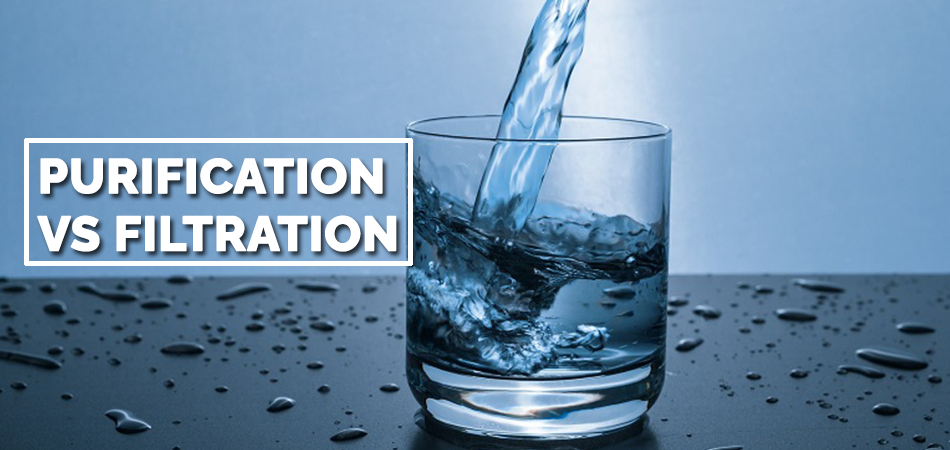 Purification Vs Filtration